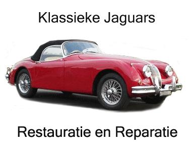 Jaguar onderhoud